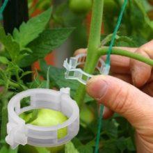 50 шт./упак. 23 мм пластиковые опорные зажимы для садовых растений круглые фиксированные клетки для виноградной лозы овощи цветы связанные пучки зажима веток